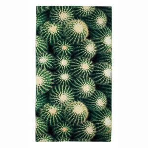 Cactus_IMG_7870-69_2048x2048