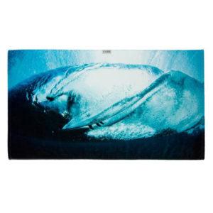 leus-surftowel-lookingglass drop in surfshop 2